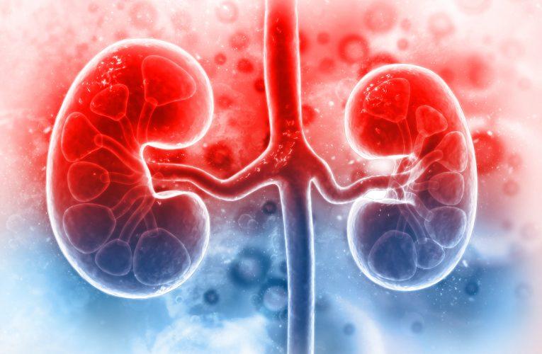 腎臟透析 洗腎如何執行