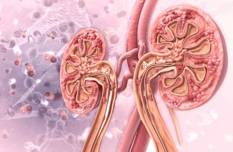 什麼是腎臟透析 洗腎